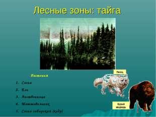 Лесные зоны: тайга Растения Сосна Ель Лиственница Можжевельник Сосна сибирска