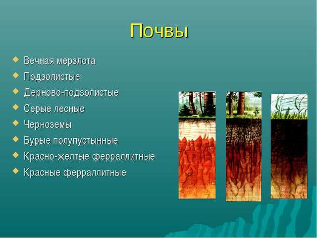 Почвы Вечная мерзлота Подзолистые Дерново-подзолистые Серые лесные Черноземы...