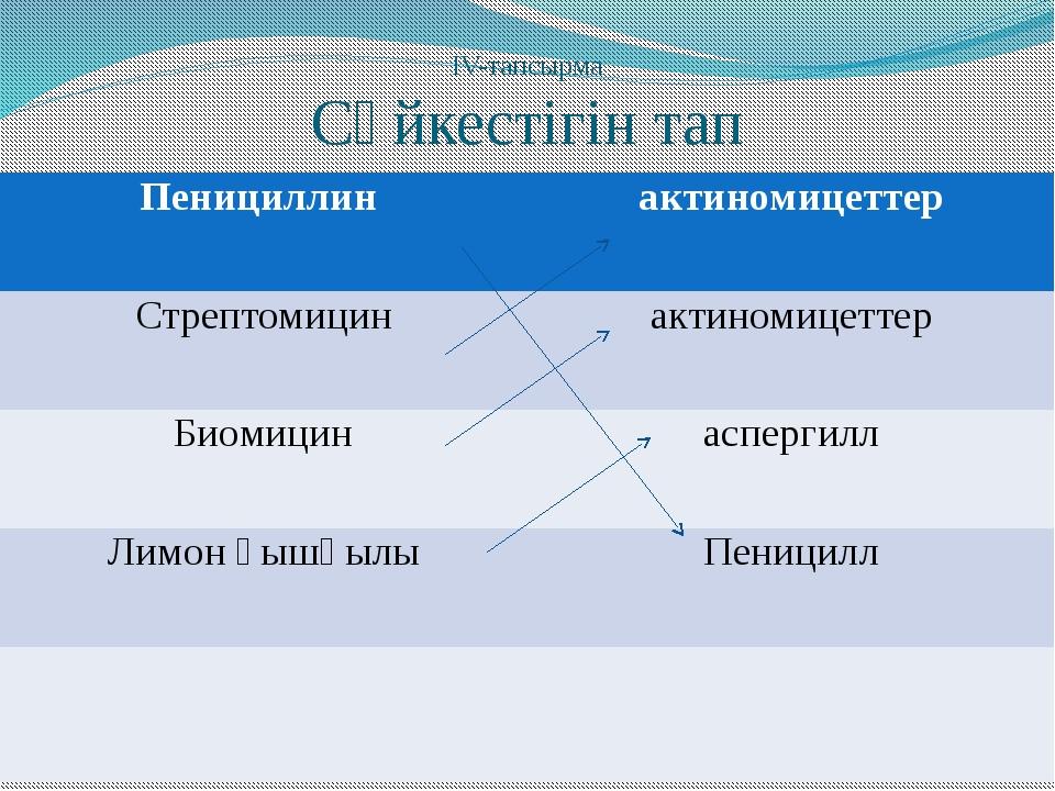 ІV-тапсырма Сәйкестігін тап Пенициллин актиномицеттер Стрептомицин актиномице...