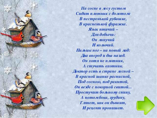 Пташка водится в лесу, Ест порою на весу, А зимой вверх ножками Виснет под о...