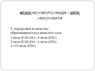 4С3Н4О3+6О2+36Н3РО4+36АДФ = 12СО2 +42Н2О+36АТФ 2. определяем количество образ