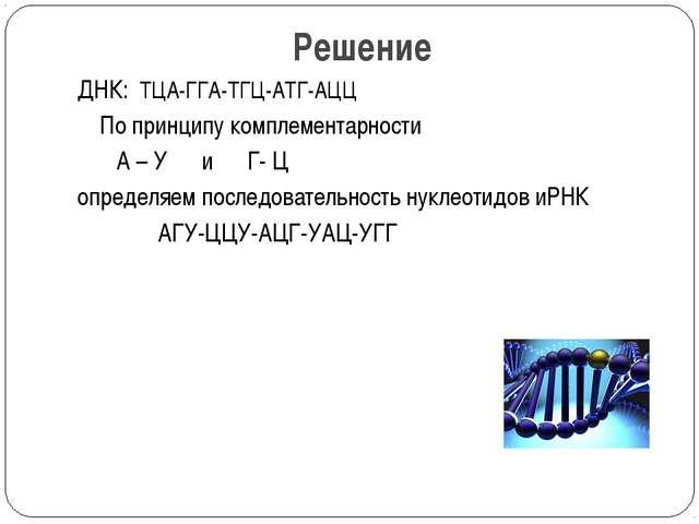 Решение ДНК: ТЦА-ГГА-ТГЦ-АТГ-АЦЦ По принципу комплементарности А – У и Г- Ц о...