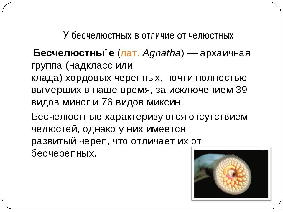 У бесчелюстных в отличие от челюстных Бесчелюстны́е(лат.Agnatha)— архаична...