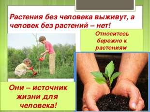Растения без человека выживут, а человек без растений – нет! Относитесь береж