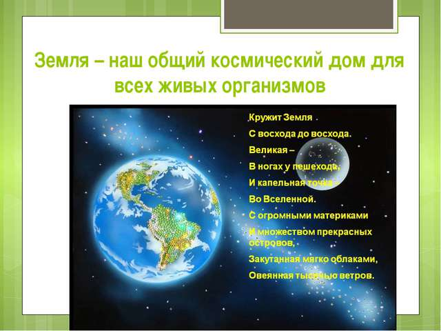 Земля – наш общий космический дом для всех живых организмов