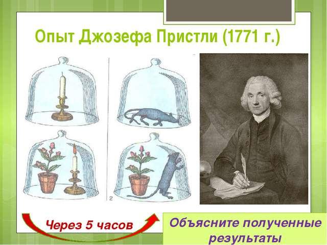 Опыт Джозефа Пристли (1771 г.) Через 5 часов Объясните полученные результаты