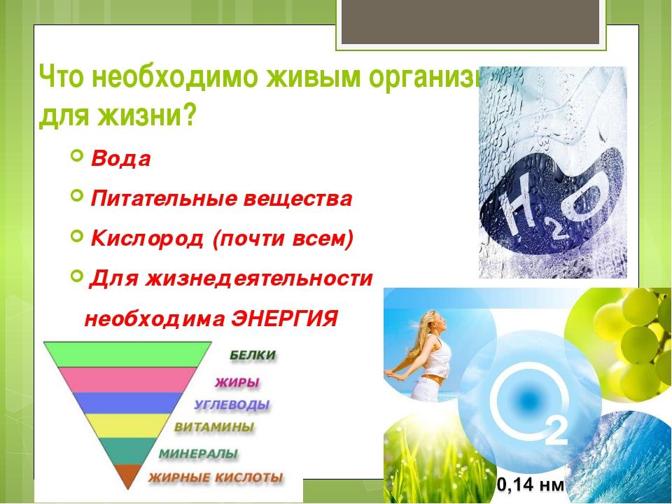 Что необходимо живым организмам для жизни? Вода Питательные вещества Кислород...