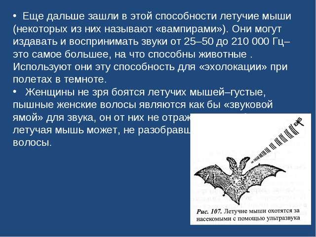 Еще дальше зашли в этой способности летучие мыши (некоторых из них называют...