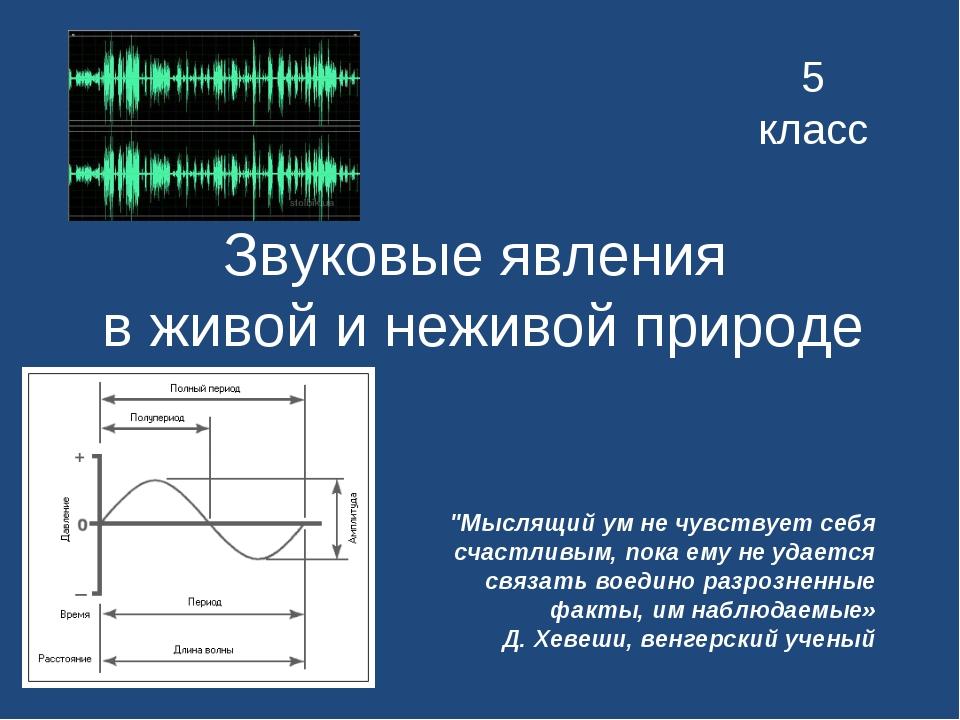 """Звуковые явления в живой и неживой природе 5 класс """"Мыслящий ум не чувствует..."""