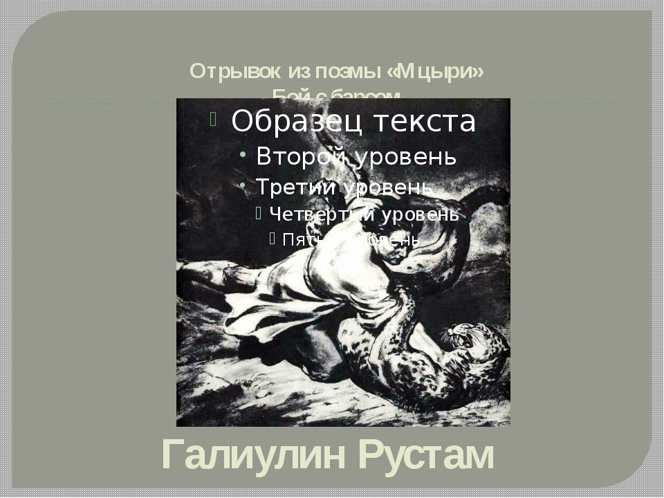 Отрывок из поэмы «Мцыри» Бой с барсом Галиулин Рустам