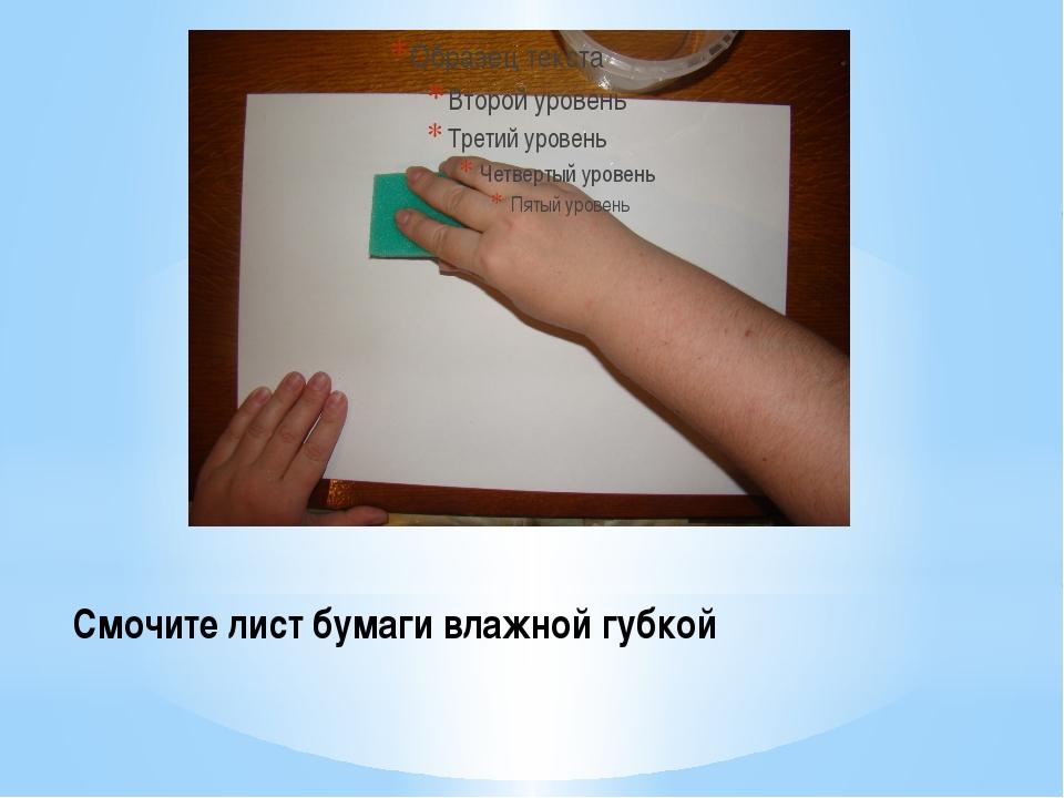 Смочите лист бумаги влажной губкой