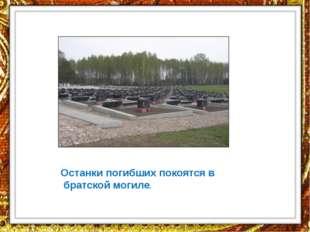 Останки погибших покоятся в братской могиле.