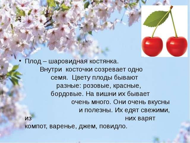 Плод – шаровидная костянка. Внутри косточки созревает одно семя. Цвету плоды...