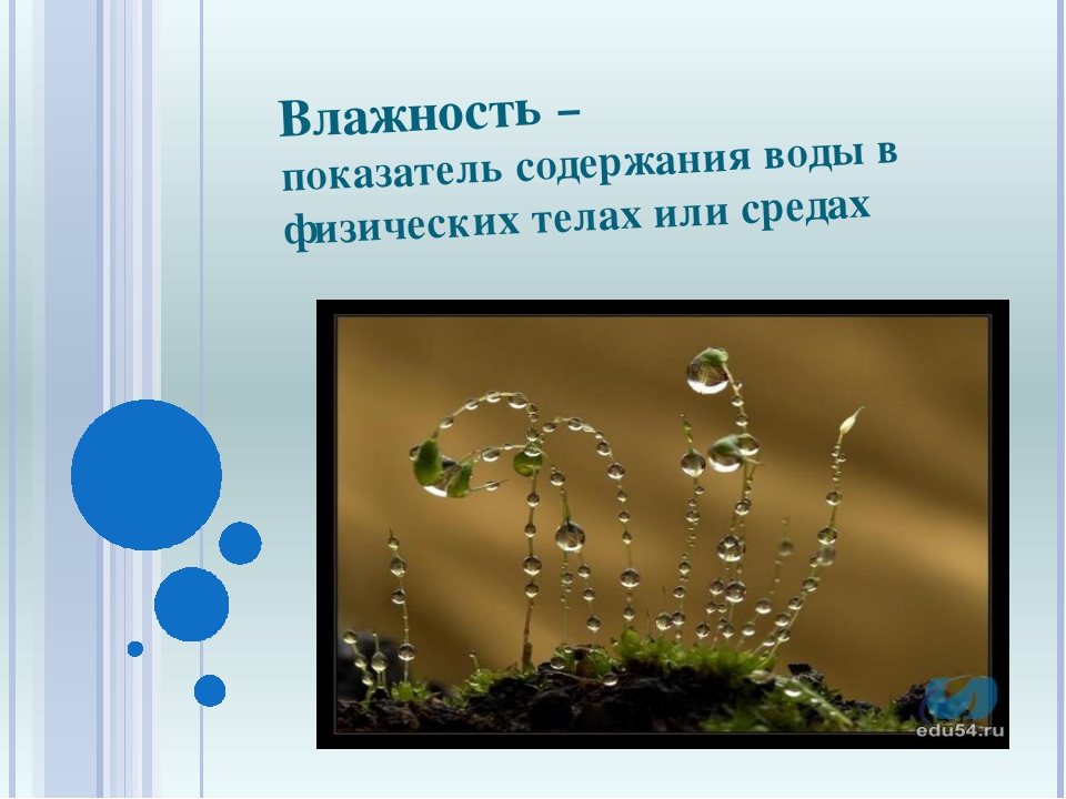 Влажность – показатель содержания воды в физических телах или средах