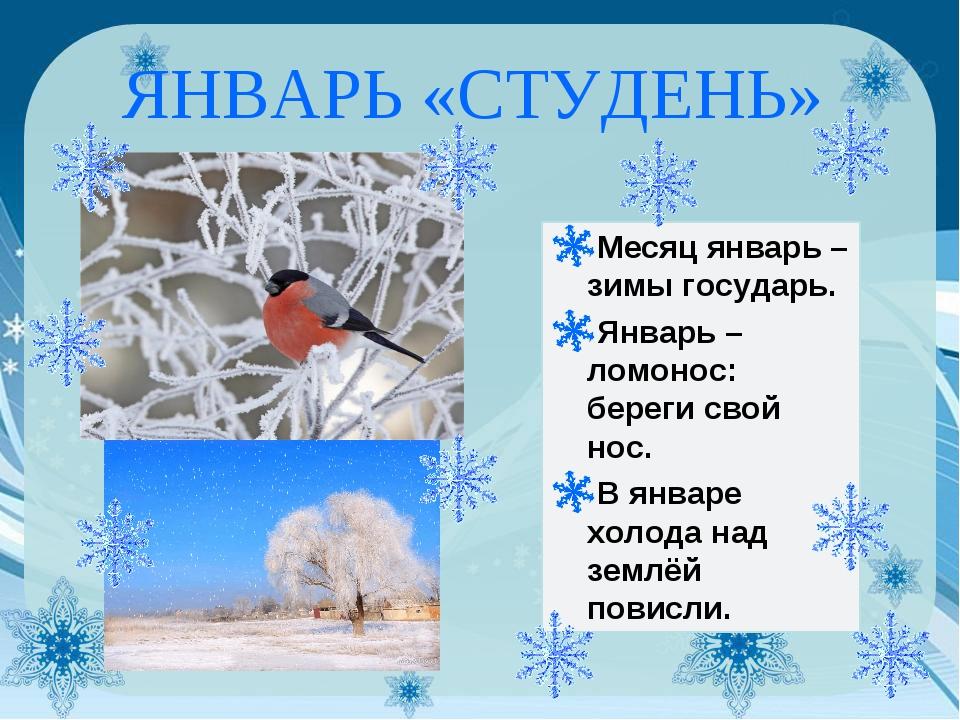 ЯНВАРЬ «СТУДЕНЬ» Месяц январь – зимы государь. Январь – ломонос: береги свой...