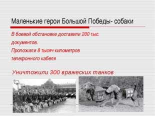 Маленькие герои Большой Победы- собаки В боевой обстановке доставили 200 тыс.
