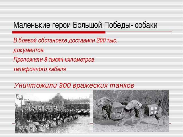 Маленькие герои Большой Победы- собаки В боевой обстановке доставили 200 тыс....
