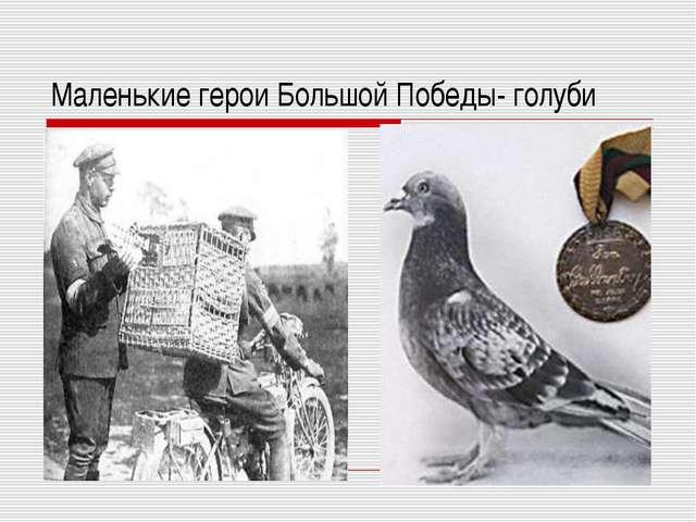 Маленькие герои Большой Победы- голуби
