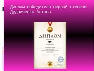 Диплом победителя первой степени Дудниченко Антона