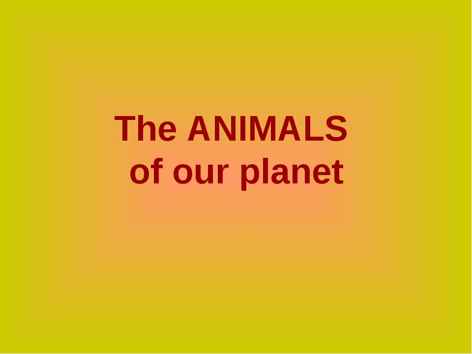 The ANIMALS of our planet