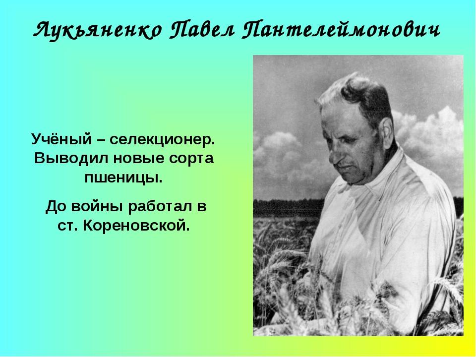 Лукьяненко Павел Пантелеймонович Учёный – селекционер. Выводил новые сорта пш...