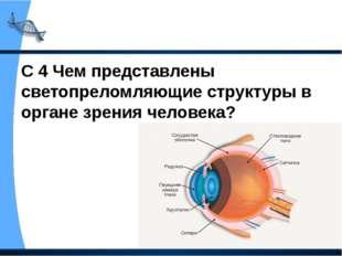 С 4 Чем представлены светопреломляющие структуры в органе зрения человека?