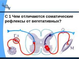 С 1 Чем отличаются соматические рефлексы от вегетативных?
