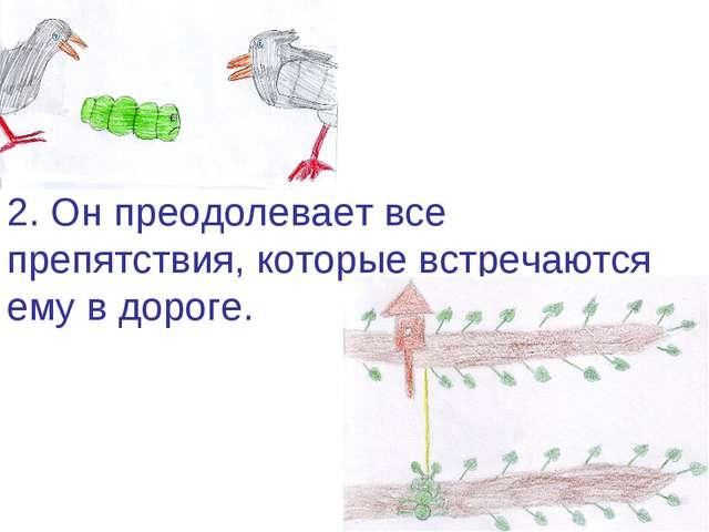 2. Он преодолевает все препятствия, которые встречаются ему в дороге.