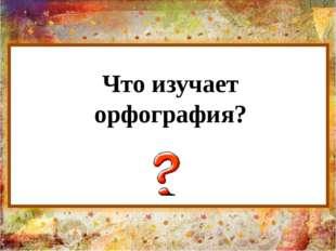 Что изучает орфография?