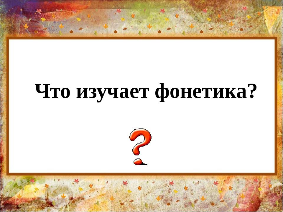 Что изучает фонетика?
