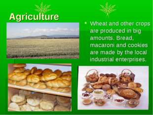 Agriculture Wheat and other crops are produced in big amounts. Bread, macaron