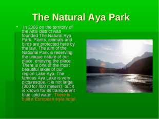 The Natural Aya Park In 2006 on the territory of the Altai district was found
