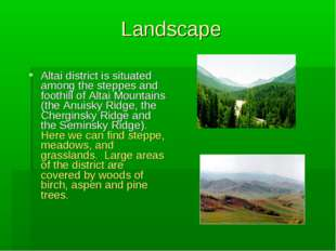 Landscape Altai district is situated among the steppes and foothill of Altai