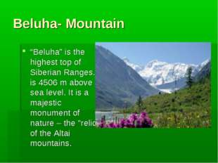 "Beluha- Mountain ""Beluha"" is the highest top of Siberian Ranges. It is 4506 m"