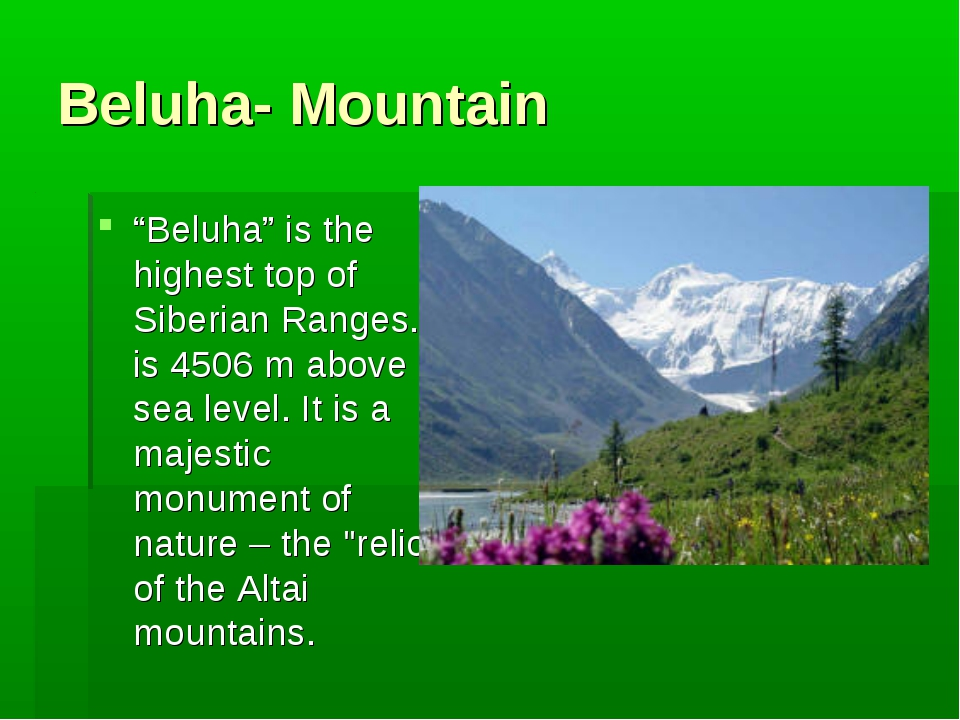 "Beluha- Mountain ""Beluha"" is the highest top of Siberian Ranges. It is 4506 m..."