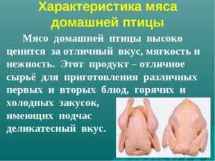 Характеристика мяса домашней птицы Мясо домашней птицы высоко ценится за отли