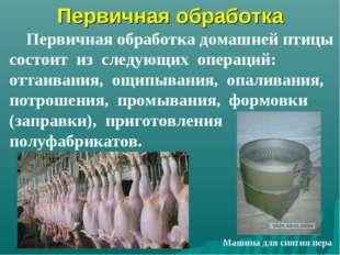 Первичная обработка Первичная обработка домашней птицы состоит из следующих о