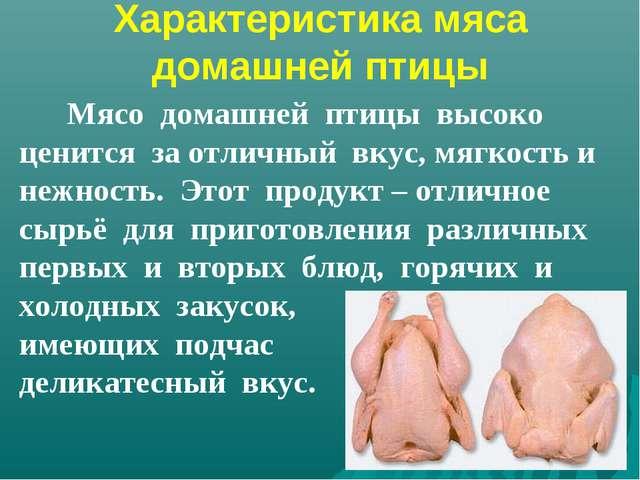 Характеристика мяса домашней птицы Мясо домашней птицы высоко ценится за отли...