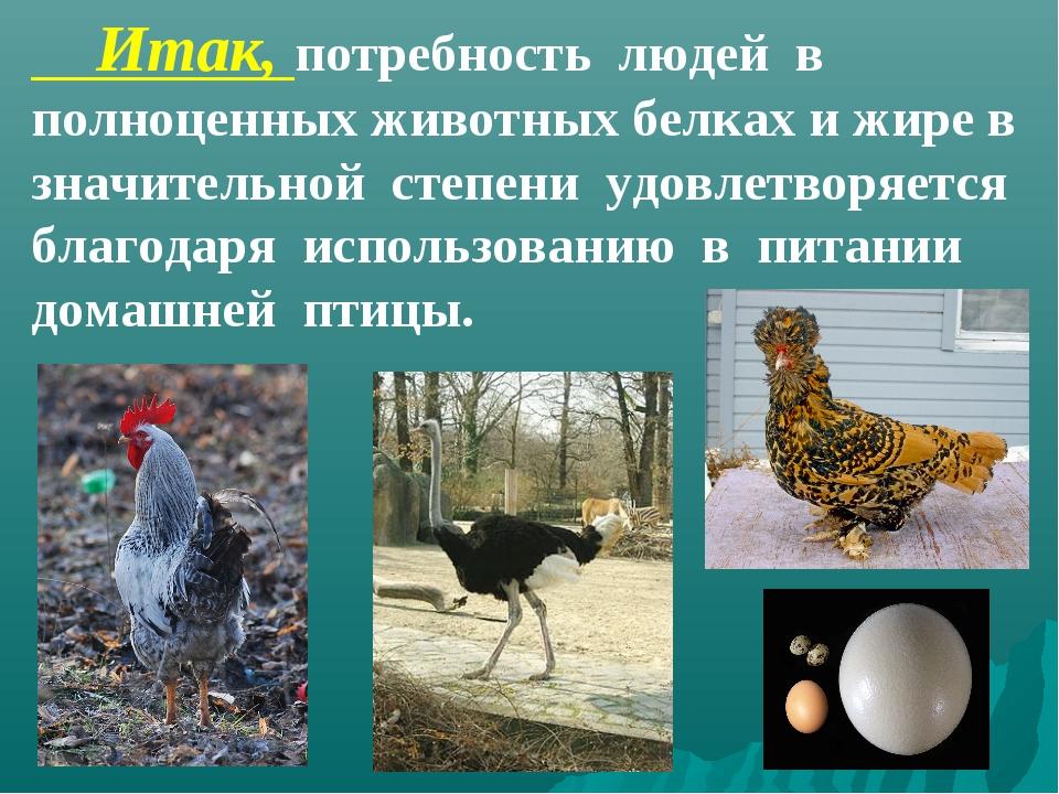 Итак, потребность людей в полноценных животных белках и жире в значительной...