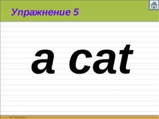 Упражнение 5 a cat