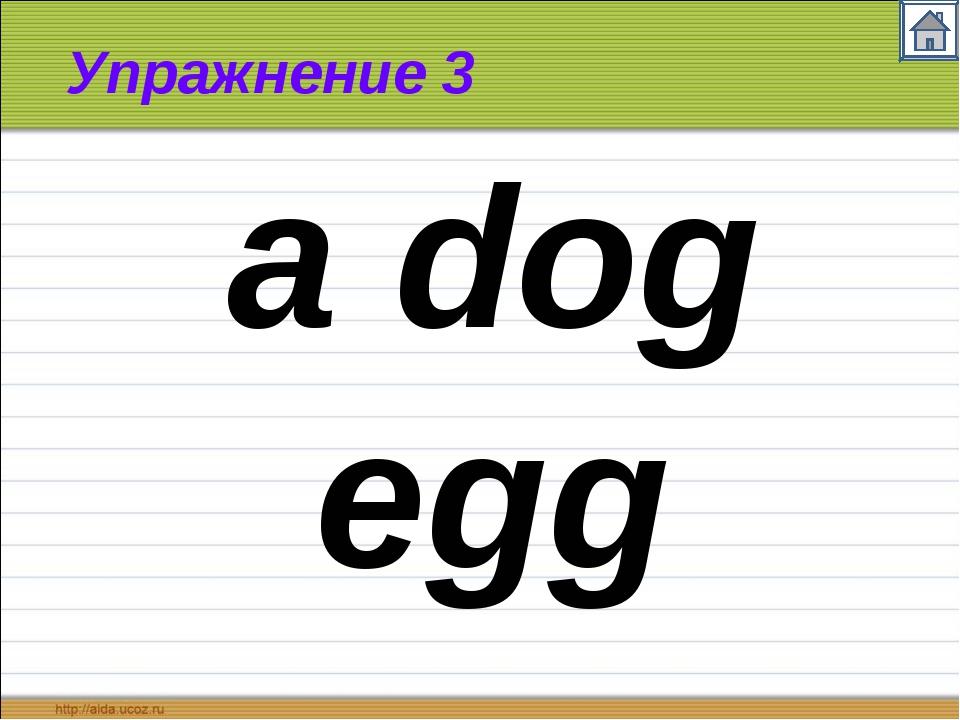 Упражнение 3 a dog egg