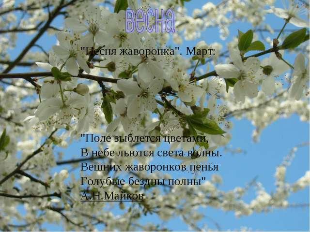 """""""Песня жаворонка"""". Март: """"Поле зыблется цветами, В небе льются света волны. В..."""