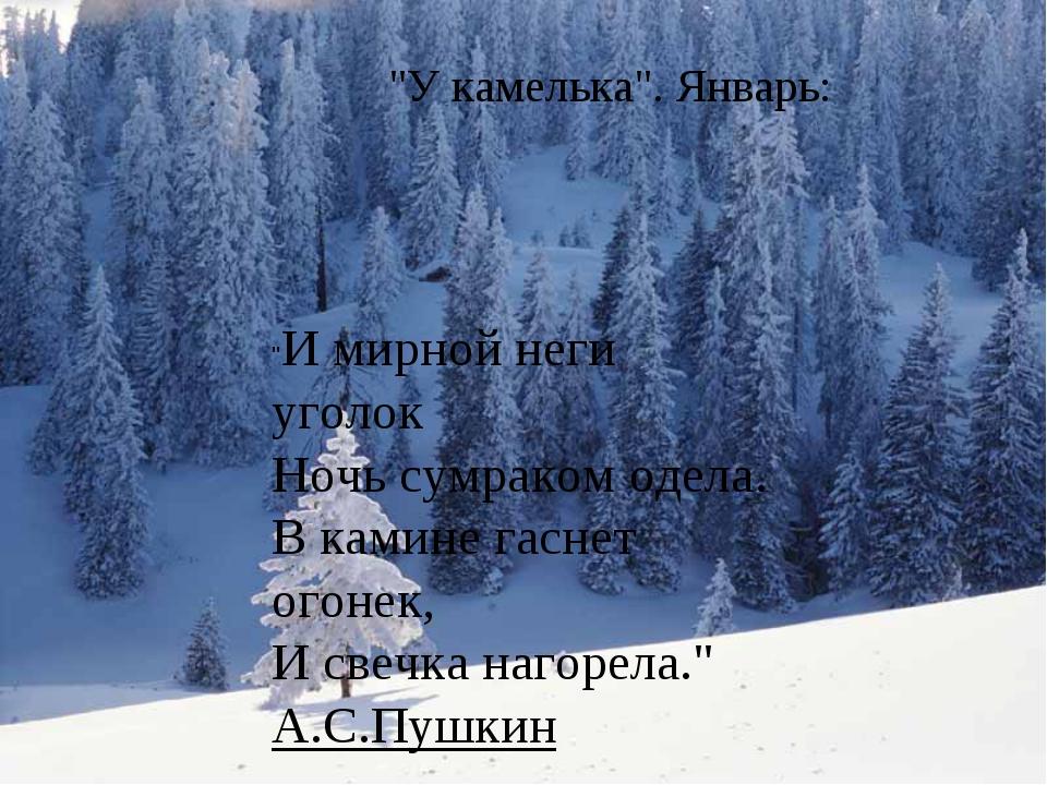 """""""У камелька"""". Январь: """"И мирной неги уголок Ночь сумраком одела. В камине гас..."""