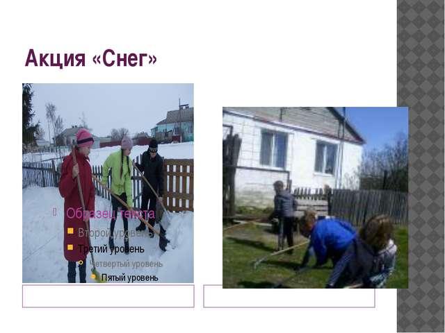 Акция «Снег» Помощь орлят зимой Надо навести порядок весной