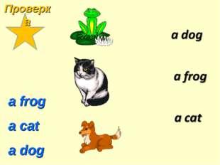 a frog a cat a dog Проверка
