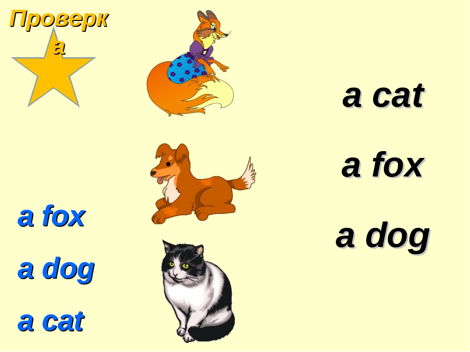 a fox a dog a cat a cat a dog a fox Проверка