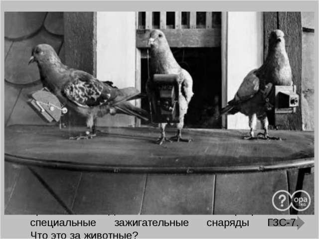 Первые бои Великой Отечественной войне показали, что проводная связь действов...