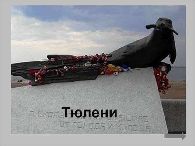 Первые опыты с боевыми морскими животными ставились именно в России, еще в 19...