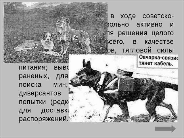 В Красной Армии уже в ходе советско-финской войны их довольно активно и успеш...