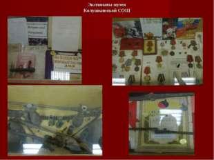 Экспонаты музея Колушкинской СОШ